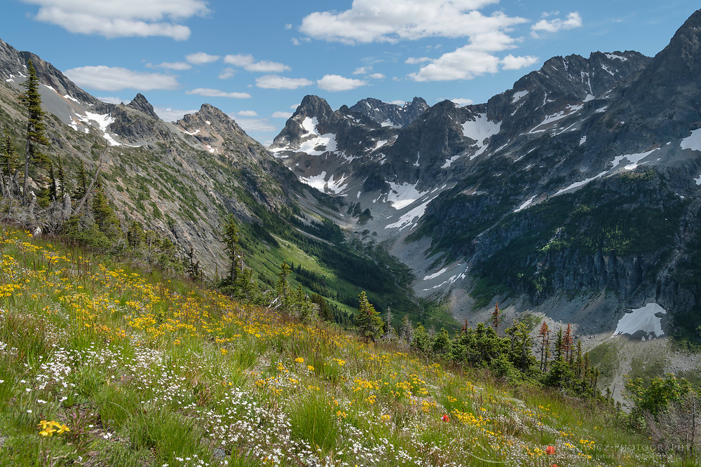 Upper Fisher Creek basin. Fisher Peak, Black Peak and Mount Arriva are in the distance. North Cascades National Park Washington