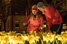 Marie Curie's great daffodil appeal | Edinburgh | 15 March 2017
