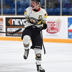 """TRENTON, ON  - MAY 5,  2017: Canadian Junior Hockey League, Central Canadian Jr. """"A"""" Championship. The Dudley Hewitt Cup. Game 7 between Georgetown Raiders and the Powassan Voodoos. Dayton Murray #20 of the Powassan Voodoos celebrates the goal during the third period.<br /> (Photo by Andy Corneau / OJHL Images)"""