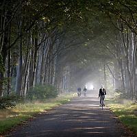 Landschap Zuidwest Fryslân