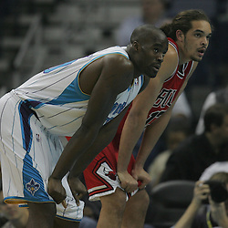Jan 29, 2010; New Orleans, LA, USA; New Orleans Hornets center Emeka Okafor (50) and Chicago Bulls center Joakim Noah (13) wait for a free throw during the first half at the New Orleans Arena. Mandatory Credit: Derick E. Hingle-US PRESSWIRE