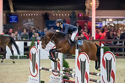 Van De Mierop Nick, BEL, Cornet's King<br /> Pavo Hengstencompetitie<br /> Azelhof Lier 2020<br /> © Hippo Foto - Dirk Caremans
