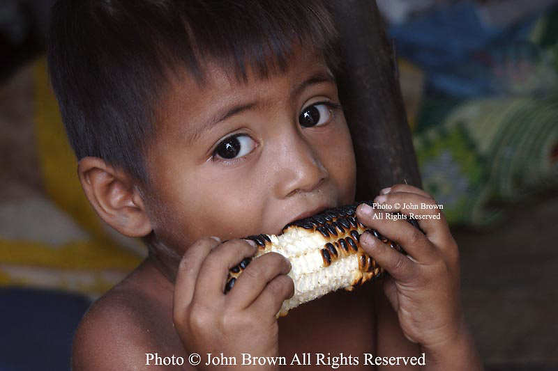 A young boy who lives in a squatter's slum in Kampong Cham, Cambodia, takes a bite of a piece of dried corn. He is among 250 people,who were displaced to this location from their former homes on the banks of the Mekong, River. The move was triggered by the construction of a large new hotel on the site of their former homes.  In all, thirty-nine families made the move and each received 50 kilograms of rice and plastic sheeting to wrap up their homes from the new hotel's owner.