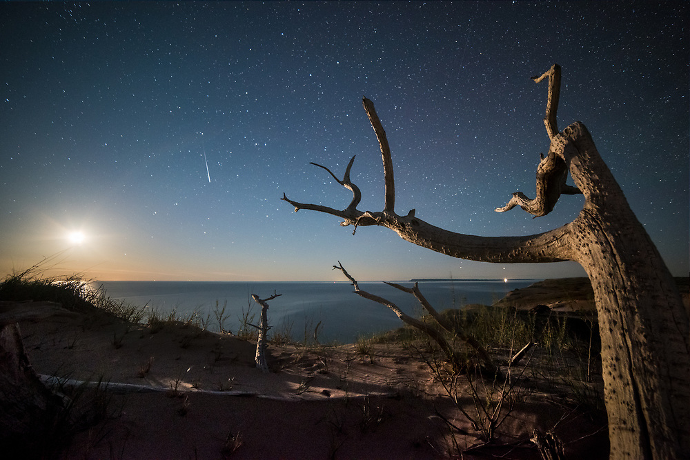 Moonset over Lake Michigan and the Ghost Forest - Sleeping Bear Dunes National Lakeshore