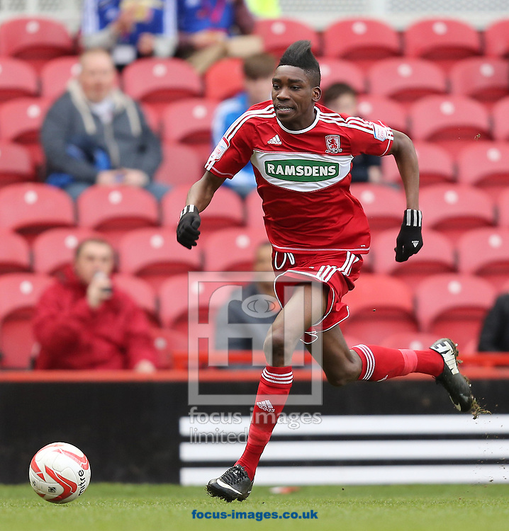 Picture by Paul Gaythorpe/Focus Images Ltd +447771 871632.16/03/2013.Sammy Ameobi of Middlesbrough during the npower Championship match at the Riverside Stadium, Middlesbrough.