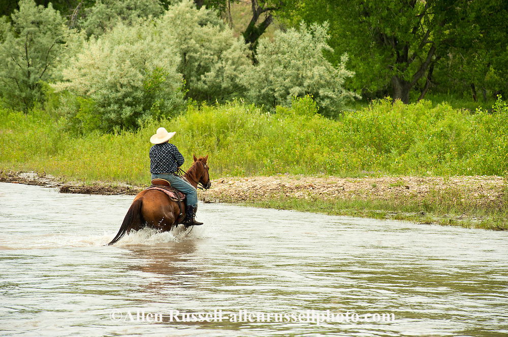 Crow Indian, John Real Bird rides across Little Bighorn River, Crow Indian reservation, Montana