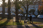 A dog owner exercises his pet during an autumn afternoon in south London's Ruskin Park, Lambeth SE24.