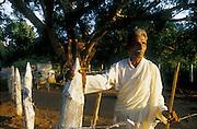Mr. Dingiri Banda tends the Bo Tree shrine in front of his village home. Kiriketwewa, Rabitigollawe, Vavuniya-trincomalee Road. 23/10/2003