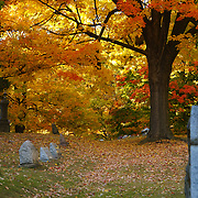 &quot;Colorful Rest&quot; <br /> <br /> Autumn in a beautiful cemetery in Michigan.
