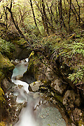 Sugar Loaf Stream carving through a canyon gorge, Routeburn, New Zealand