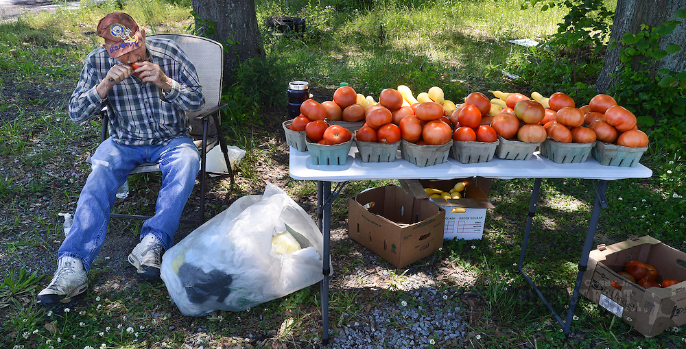 Photo by Gary Cosby Jr.    Dewitt Widner sits beside Highway 55 in Falkville pedaling his tomatoes.  Widner also gave good testimony to the quality of his produce as he sliced and ate some of his goods.