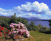 Springtime view across Loch Etive towards Ben Cruachan, West Highlands.
