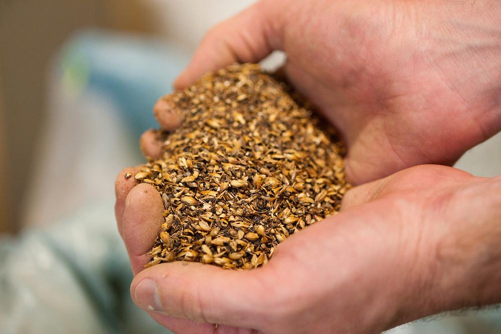 Grain in hands