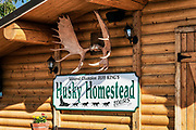 Jerff King's Husky Homestead Kennel, Denali, Alaska, USA