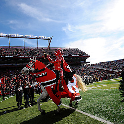 The Rutgers Scarlet Knight mascot takes the field prior to American Athletic Conference Football action between Rutgers and Cincinnati on Nov. 16, 2013 at High Point Solutions Stadium in Piscataway, New Jersey.