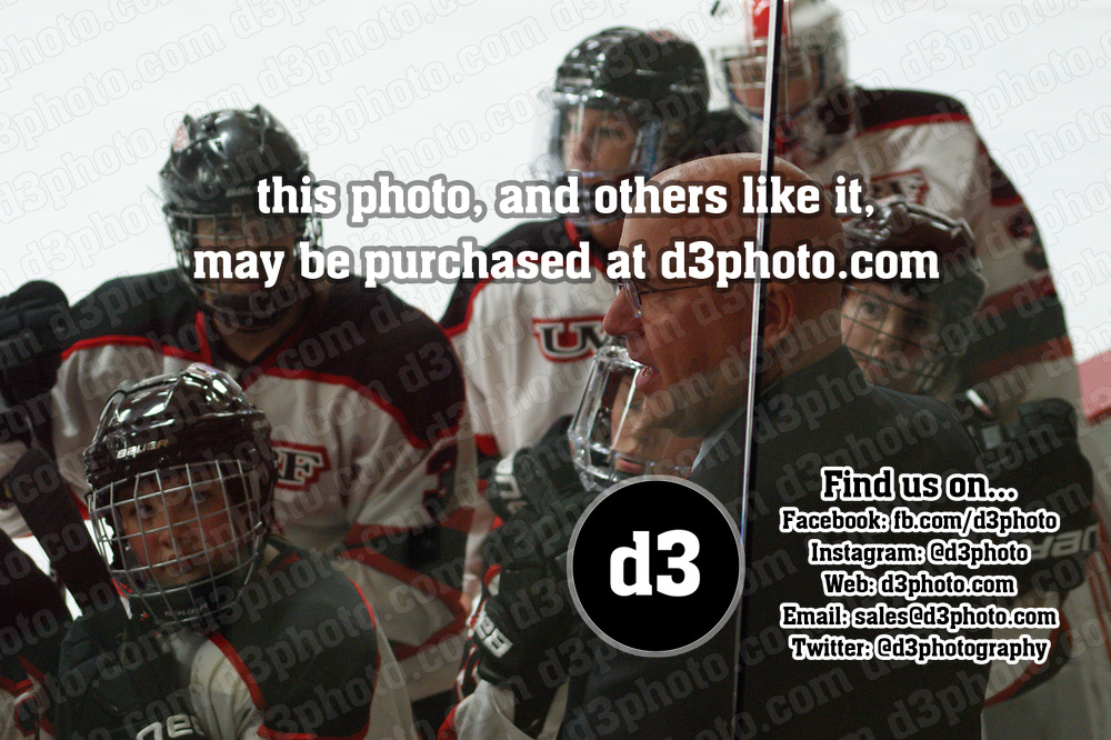 Women's Ice Hockey: University of Wisconsin, River Falls Falcons vs. Bethel University (Minnesota) Royals