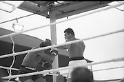 Ali vs Lewis Fight, Croke Park,Dublin..1972..19.07.1972..07.19.1972..19th July 1972..As part of his built up for a World Championship attempt against the current champion, 'Smokin' Joe Frazier,Muhammad Ali fought Al 'Blue' Lewis at Croke Park,Dublin,Ireland. Muhammad Ali won the fight with a TKO when the fight was stopped in the eleventh round...A combination of left and right is thrown at Lewis by Ali.