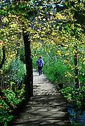 Woman walking along raised walkway. Plitvice National Park, Croatia