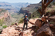 A hiker pauses on Bright Angel Trail, South Rim of Grand Canyon National Park, Arizona, USA. Grand Canyon began forming at least 5 to 17 million years ago and now exposes a geologic wonder, a column of well-defined rock layers dating back nearly two billion years at the base. While the Colorado Plateau was uplifted by tectonic forces, the Colorado River and tributaries carved Grand Canyon over a mile deep (6000 feet / 1800 meters), 277 miles (446 km) long and up to 18 miles (29 km) wide. For licensing options, please inquire.