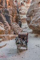 Petra, Jordan - May 11, 2013: people in horse cart at the Siq path in Nabatean Petra Jordan