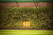 CHICAGO, IL - OCTOBER 29, 2016: A detail day time view of Wrigley Field, and the ivy covered outfield wall, before the start of Game 4 of the 2016 World Series between the Cleveland Indians and the Chicago Cubs at Wrigley Field on October 29, 2016 in Chicago, Illinois. (Photo by Jean Fruth)
