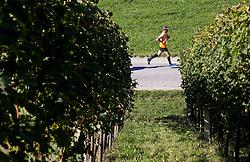 4. Konjiski maraton 2016 / 4th Konjice marathon 2016, on September 25, 2016 in Slovenske Konjice, Slovenia. Photo by Vid Ponikvar / Sportida