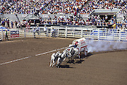Chuckwagon Race, Calgary Stampede, Calgary, Alberta, Canada (editorial use only, no model release)<br />