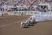 Chuckwagon Race, Calgary Stampede, Calgary, Alberta, Canada (editorial use only, no model release)<br />