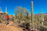 Mountain Biking-Arizona-Phoenix Area