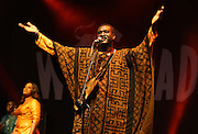 MALMESBURY, UK - JULY 24: Bassekou Kouyate and N'goni ba perform on stage at Womad on July 24th, 2014 in Malmesbury, United Kingdom. (Photo by Philip Ryalls/Wireimage)**Bassekou Kouyate and N'goni ba