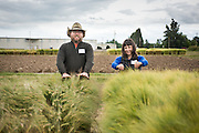Andrew Still of Adaptive Seeds and Lane Selman of Culinary Breeding network