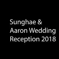 Sunghae & Aaron Wedding Reception