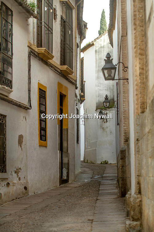 2016 02 19 Cordoba Andalusien Spanien<br /> Gr&auml;nder i gamla stan i Cordoba<br /> <br /> <br /> ----<br /> FOTO : JOACHIM NYWALL KOD 0708840825_1<br /> COPYRIGHT JOACHIM NYWALL<br /> <br /> ***BETALBILD***<br /> Redovisas till <br /> NYWALL MEDIA AB<br /> Strandgatan 30<br /> 461 31 Trollh&auml;ttan<br /> Prislista enl BLF , om inget annat avtalas.