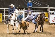 Steer wrestler Kyle Callaway makes his run during slack at the Bismarck Rodeo on Saturday, Feb. 3, 2018. He had a time of 15.5 seconds. This photo and more from most runs are available at Bobwire-S.com.