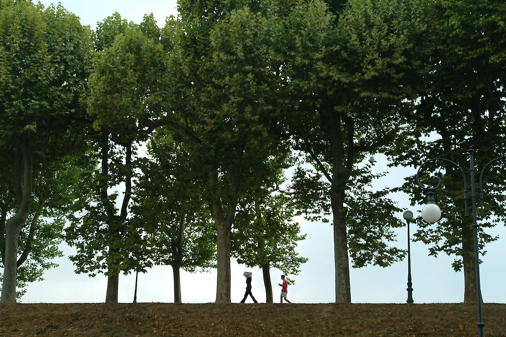 People walking in park with tall trees in Lucca, Italy