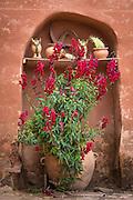 Flowers and pots, Misminay pueblo, Sacred Valley, Peru.