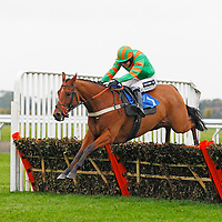 Hawkhill and Aiden Coleman winning the 3.20 race