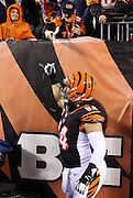 Cincinnati Bengals defensive tackle Domata Peko (94) gives a Hawaiian shaka sign as he gets the fans fired up before the NFL AFC Wild Card playoff football game against the Pittsburgh Steelers on Saturday, Jan. 9, 2016 in Cincinnati. The Steelers won the game 18-16. (©Paul Anthony Spinelli)