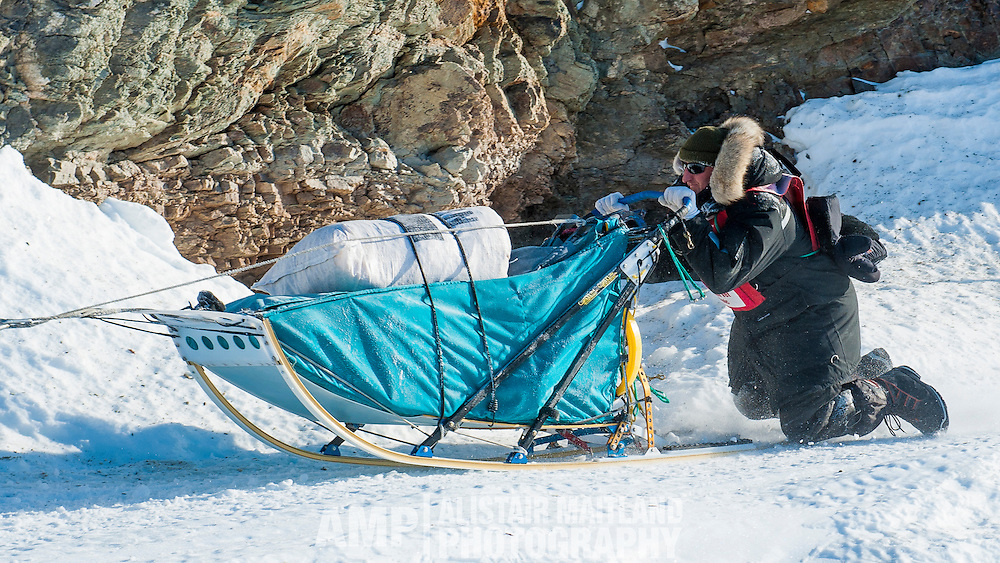 John King is brought to his knees by the rough terrain during the Percy Memorial Sled Dog Race this past Easter Weekend.