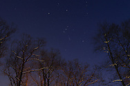 Middletown, NY - The constellation Orion is visible between the snow-covered branches of trees following a snowstorm on Feb. 23, 2008.