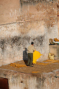 Detail of a man removing a dry skin from a terrace; its bright yellow colour shines against the ancient walls, Chouara Tannery, Fez, Morocco, pictured on February 25, 2009 in the evening. The Chouara tannery is the largest of the four ancient tanneries in the Medina of Fez where the traditional work of the tanners has remained unchanged since the 14th century. It is composed of numerous dried-earth pits where raw skins are treated, pounded, scraped and dyed. Tanners work in vats filled with various coloured liquid dyes derived from plant sources. Colours change every two weeks, poppy flower for red, mint for green, indigo for blue, chedar tree for brown and saffron for yellow. Fez, Morocco's second largest city, and one of the four imperial cities, was founded in 789 by Idris I on the banks of the River Fez. The oldest university in the world is here and the city is still the Moroccan cultural and spiritual centre. Fez has three sectors: the oldest part, the walled city of Fes-el-Bali, houses Morocco's largest medina and is a UNESCO World Heritage Site;  Fes-el-Jedid was founded in 1244 as a new capital by the Merenid dynasty, and contains the Mellah, or Jewish quarter; Ville Nouvelle was built by the French who took over most of Morocco in 1912 and transferred the capital to Rabat. Picture by Manuel Cohen.