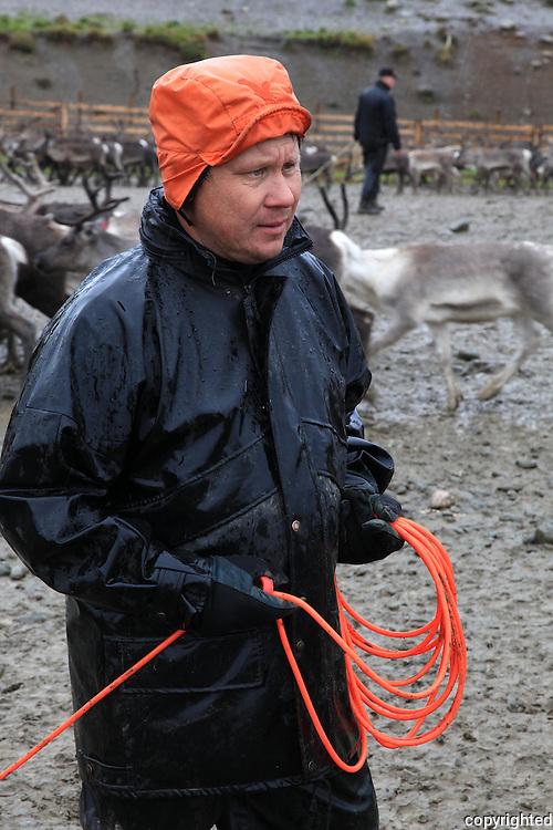 Slakting i Saanti Sijte, Essand reinbeitedistrikt. Skarpdalen mellom Tydal og Meråker. Reindeer slaughtering by the south sami group Saanti Sijte. Mid-Norway. Aslak Brandsfjell.