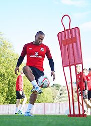 CARDIFF, WALES - Wednesday, October 9, 2013: Wales' Jermaine Easter during a training session at the Vale of Glamorgan ahead of the 2014 FIFA World Cup Brazil Qualifying Group A match against Macedonia. (Pic by David Rawcliffe/Propaganda)