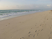 Foot prints along the beach early morning Miami Beach USA