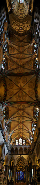 Standing beneath the vaulted ceilings of Salisbury Cathedral I was stunned<br /> by the craftsmanship, beauty and lighting of this holy place.