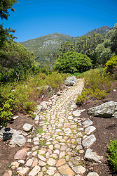 January 4, 2018 - Cape Town, Western Cape, South Africa - A stone pathway at the Kirstenbosch Botanical Gardens in Cape Town, South Africa (Credit Image: © Edwin Remsberg / Vwpics/VW Pics via ZUMA Wire)