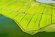 Nederland, Noord-Holland, Amsterdam, 05-08-2014; Polder IJdoorn, bij Durgerdam.  Buitendijkse polder voormalige Zuiderzee.<br /> Polder outside the regular seawall, near Amsterdam.<br /> luchtfoto (toeslag op standard tarieven);<br /> aerial photo (additional fee required);<br /> copyright foto/photo Siebe Swart