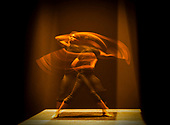 Acosta Danza 13th February 2020