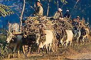 Shwe Nyaung