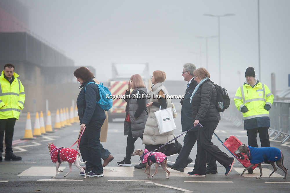 NEC, BIRMINGHAM, ENGLAND, UK. 9th MARCH 2018. Pictured:  Dogs and their owners make their way over a pedestrian crossing near to the NEC entrance. / Hundreds of dogs and their proud owners arrive at the NEC on a cold and misty morning. First held in 1891, Crufts is said to be the largest show of its kind in the world, the annual four-day event, features thousands of dogs, with competitors travelling from countries across the globe to take part and vie for the coveted title of 'Best in Show'.  // Lee Thomas, Tel. 07784142973. Email: leepthomas@gmail.com  www.leept.co.uk (0000635435)